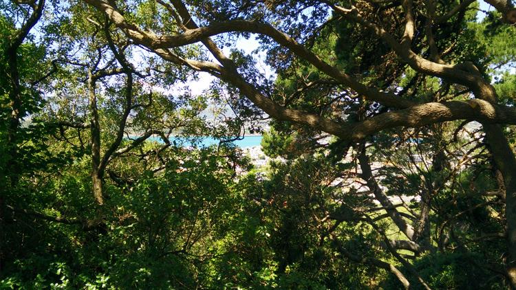new zealand travel nouvelle zelande middle earth terre du milieu abel tasman coast track