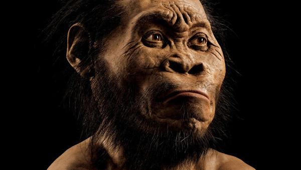 Homo Naledi real photo