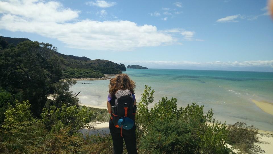 randonnée abel tasman coast track national park nouvelle zelande terre du milieu moutons hobbiton