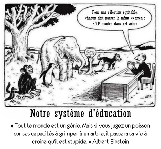 einstein citation genie poisson arbre education systeme